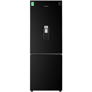 Tủ lạnh Samsung Inverter 307 lít RB30N4170BU/SV (Model 2020)