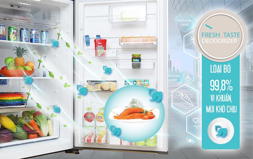 Tủ lạnh Electrolux ETE5720GA 573 lít Inverter
